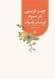 معرفی کتاب «چیز غریبی در سرم» نوشته «اورهان پاموک» ترجمهی صابر حسینی