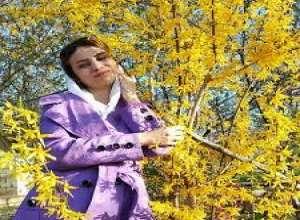 شعرهایی از آیدا مجیدآبادی به عربی   ترجمه ی تمام میهوب