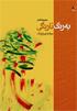 «به رنگ نارنگي» سيامك بهرام پرور به معرفی سينا علي محمدي